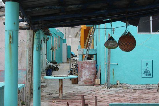 All About Tulum: Mexican landscape at Tulum