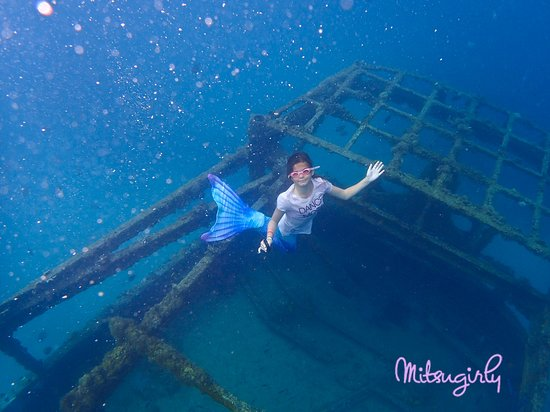 Pirate's Cove: Snorkeling at the shipwreck