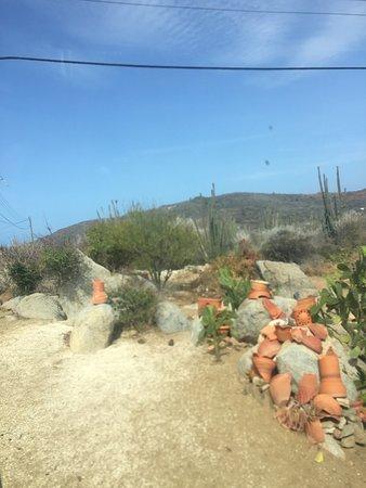 Aruba Half Day Island Tour: Mountains