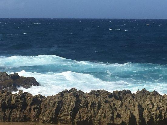 Aruba Half Day Island Tour: Natural Bridge