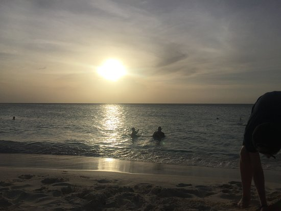 阿鲁巴半日岛游照片