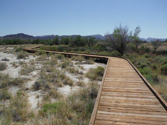Amargosa Valley, NV: well made boardwalks to preserve the terrain