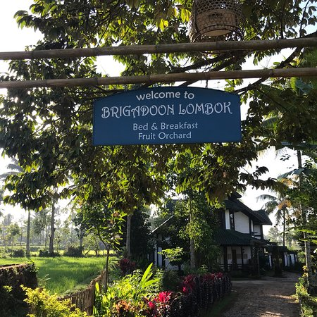 Brigadoon Lombok B&B Photo