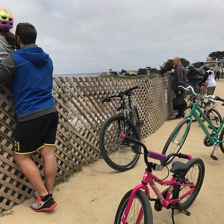 Monterey Peninsula Recreational Trail Photo