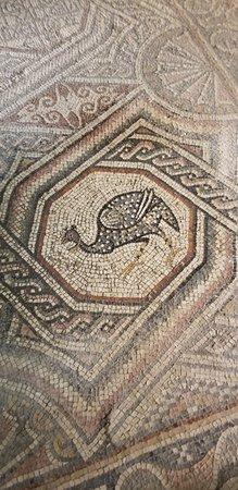 Madaba Archaeological Museum 이미지