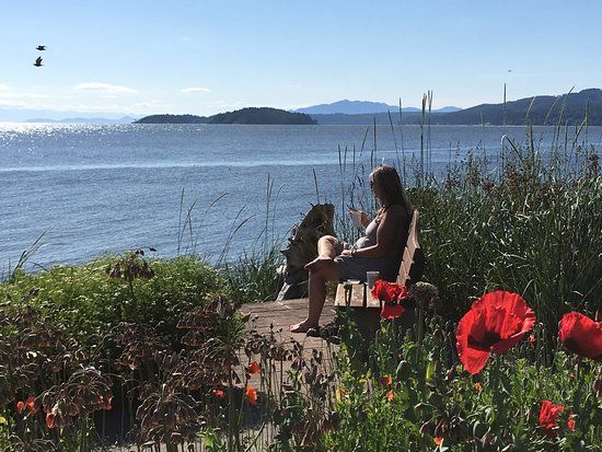 Sechelt, Canada: Just quietly enjoying the view.