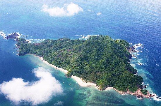 Excursión de un día a Isla Tortuga...
