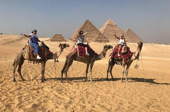 Tour aux pyramides et au musée égyptien