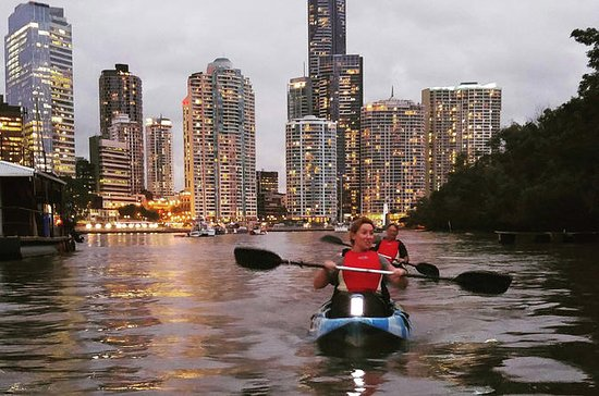 Brisbane River Guided Night Tour med...