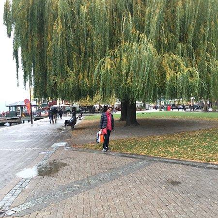 Foto de Novotel Queenstown Lakeside