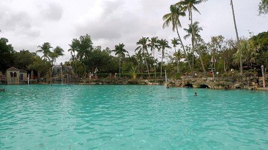 Venetian Pool: pool view