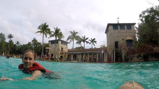 Venetian Pool: from the pool