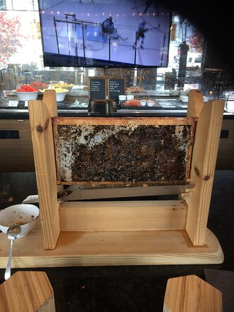 Fairmont Waterfront: Honey in dining room
