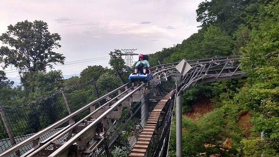 Ober Gatlinburg's Ski Mountain Coaster