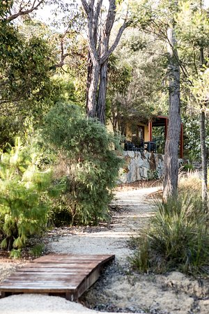 Aiyana Retreat: Tao path to Wellness
