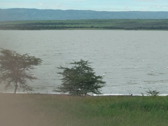 Lake Elementaita, Kenya: Spectacular View From the Room