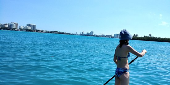 So Flo Water Adventures: Manatee and Dolphin Paddle Experience
