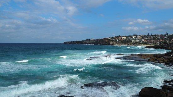 Bondi to Coogee Walk: Coastal walk view
