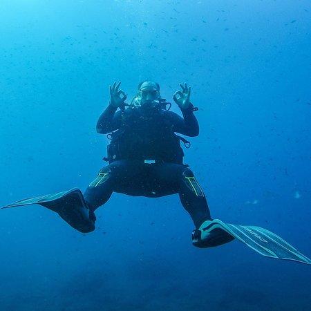 Dive & Dive Centro de Buceo Photo
