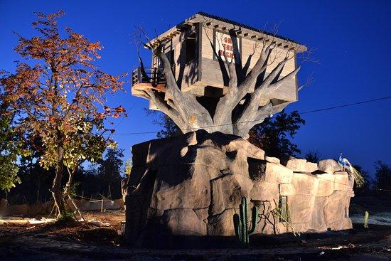 Tathastu Resorts: Tree House Exterior's Night View