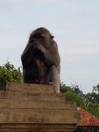 乌鲁瓦图庙照片