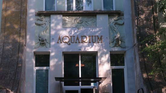 The Aquarium and the Black Sea Museum: Entrée de l'aquarium, dans le parc en bordure de mer