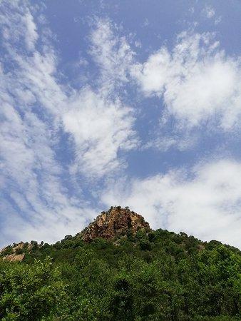 Monte Arcosu照片