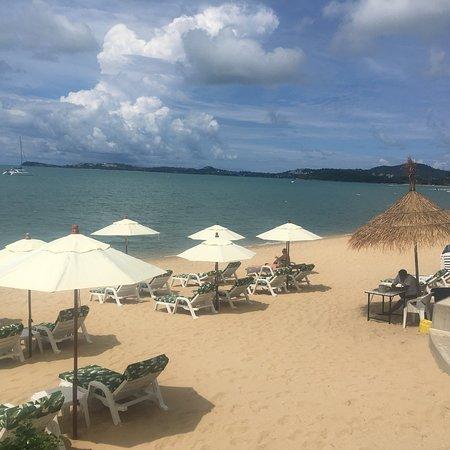 Eden Beach Bungalows ภาพถ่าย