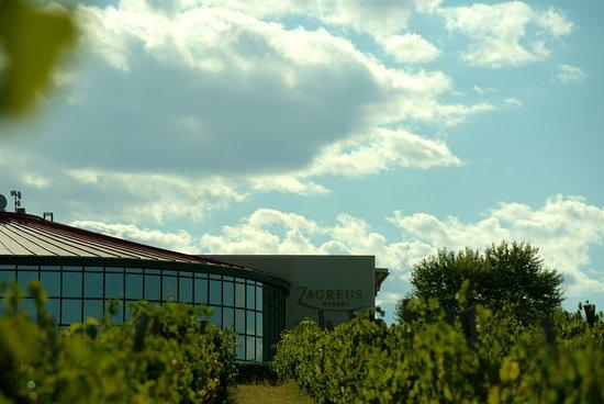 Zagreus Winery ภาพถ่าย