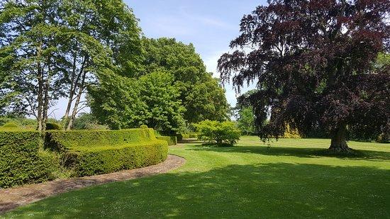 Hole Park Gardens: The wisteria garden was in full boom.