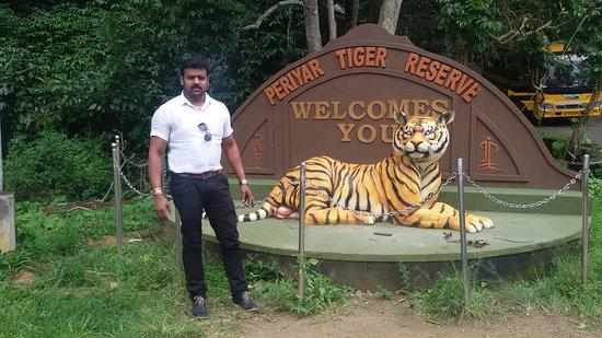 Periyar Tiger Reserve: Periyar National Park