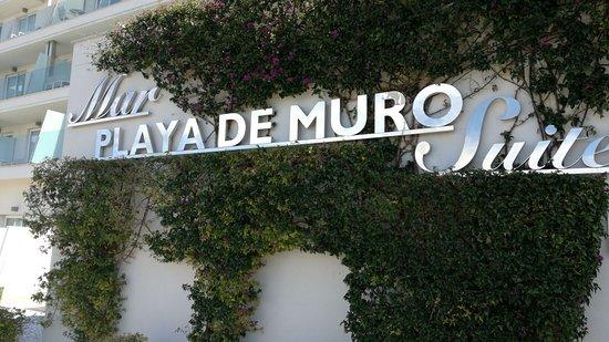 Mar Hotels Playa de Muro Suites: Entrada del Hotel!!