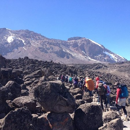 Blessed Tanzania Travel: 7 Days Machame Route group climbing