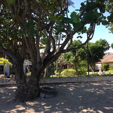 The Patra Bali Resort & Villas: photo2.jpg