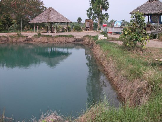 Ganesha Kampot Eco Guesthouse and More: Pool