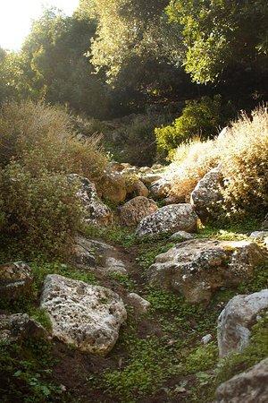 Aposelemis canyon照片