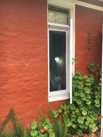 Ek Chidiya Cottage: Rosemary, geraniums