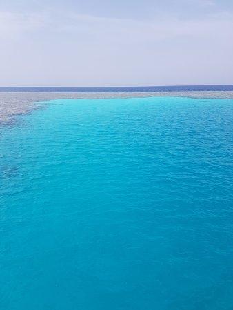 Dive Point Red Sea : Gota Abu Galawa Lagoon