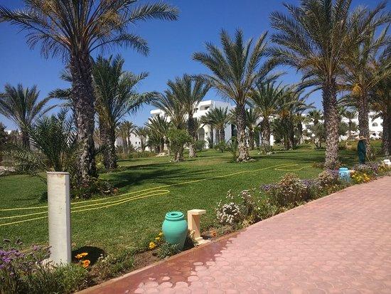 SENTIDO Palm Azur ภาพถ่าย