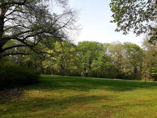 Stadt Park