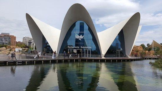 Oceanogràfic: Oceanografic Valencia