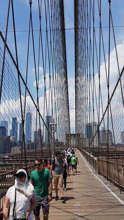 Jembatan Brooklyn: Cables.