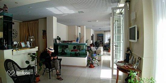 Hotel Il Gatto Photo