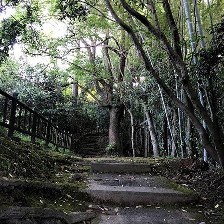 Jigenyama Park: 仏像庫より、さらに上がってみる