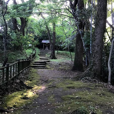 Jigenyama Park: うっそうとした大木の小道の奥に、なにやら聖域の趣き