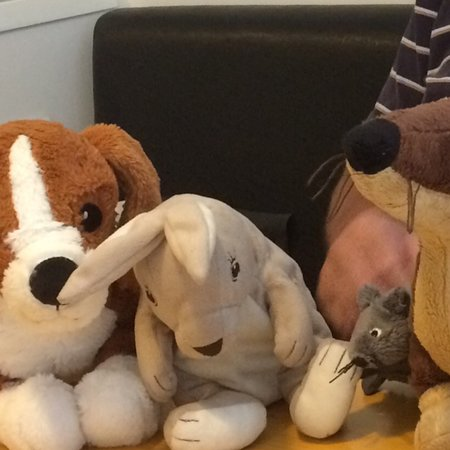 Caffé 22: Soft toys for children no matter how old they are