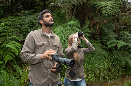 Ulcumano Ecolodge : Birdwatching