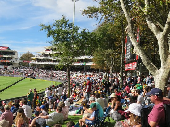 PPC Newlands Cricket: The Oaks enclosure to the North Stand