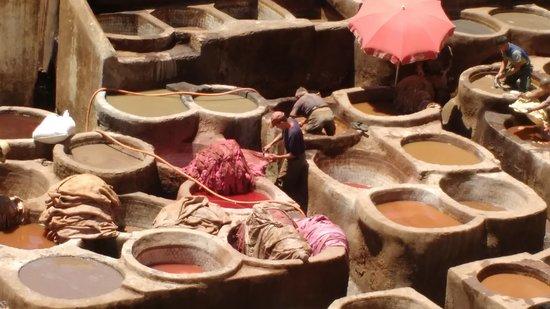 Chouara皮革厂照片