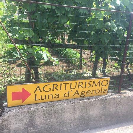 Bilde fra Agriturismo Luna d'Agerola